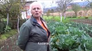 getlinkyoutube.com-Četvrtak u Kozarcu 20 10 2016  Nijaz Caja Huremović, Kozarac eu