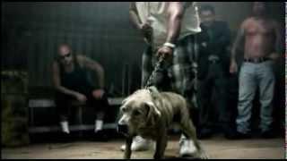 getlinkyoutube.com-pelea de perro con hombre