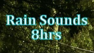 """getlinkyoutube.com-""""Rain"""" 8 hours of """"Rain Sounds""""    """"Sleep Sounds"""""""