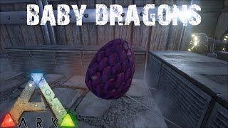 getlinkyoutube.com-ARK Survival Evolved - Hatching Baby Dragons E4