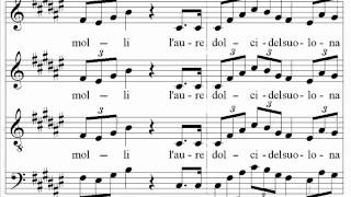 getlinkyoutube.com-Verdi - Nabucco - Va pensiero - Santa Cecilia Choir and Orchestra