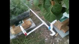 getlinkyoutube.com-Check out this Very Impressive Self Watering Rain Gutter Grow System!