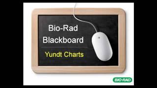 getlinkyoutube.com-Bio-Rad Blackboard - Yundt Charts
