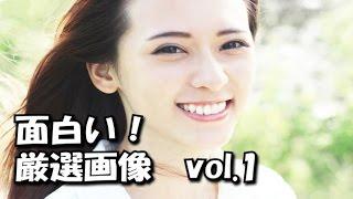 getlinkyoutube.com-【吹いたら負け!】思わず吹き出す! バカでかわいい厳選画像まとめ Vol.1