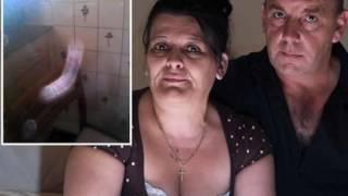 getlinkyoutube.com-Top 5 fantasmas violadores
