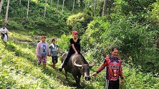 MOUNTAIN LIFE | BUHAY BUKID | RIDING WATER BUFFALO | PHILIPPINES VLOG | PART 2