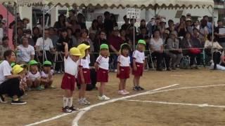 getlinkyoutube.com-【運動会】3歳児かけっこ