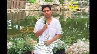 getlinkyoutube.com-Ayurvedic use Country Gooseberry (Bhumi Amala)