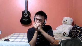 getlinkyoutube.com-Canon In C - Johann Pachelbel - Harmonica Cover
