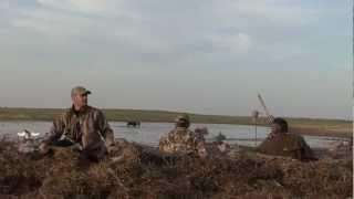 getlinkyoutube.com-DUCK HUNTING 64 ducks in 15 min Canada