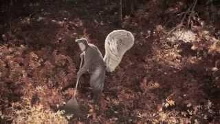 getlinkyoutube.com-Squirrel Combat Video |  #WARONSQUIRRELS