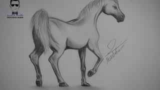 getlinkyoutube.com-تعلم كيفية رسم حصان بالرصاص مع الخطوات للمبتدئين
