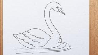 getlinkyoutube.com-How to draw swan