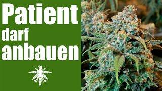 getlinkyoutube.com-Erster Patient darf Cannabis anbauen | DHV News #96