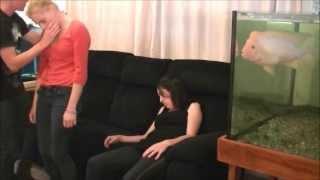 getlinkyoutube.com-SomeDude IN Australia: Hypnosis Deepener
