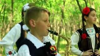 getlinkyoutube.com-David Ortan - Colaj maramures (instrumentala sax)