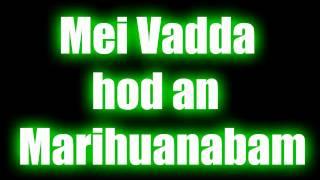 Hans Söllner - Mei Vadda hod an Marihuanabam [HD]