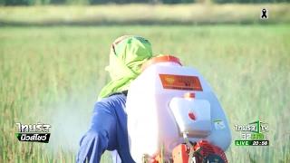 getlinkyoutube.com-จี้ฟัน 2 สนช.เอี่ยวทุจริตยาปราบศัตรูพืช | 20-02-60 | ไทยรัฐนิวส์โชว์