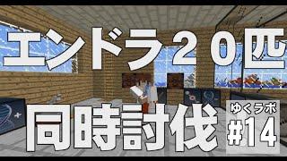 getlinkyoutube.com-【Minecraft】ゆくラボ~遺伝子工学でリケジョ無双~ 最終回【ゆっくり実況】