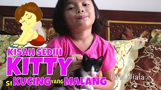 getlinkyoutube.com-Funny Kitty Cat 🐱 Anak Kucing Tidur Lucu di Pangkuan Niala @lifiatubehd