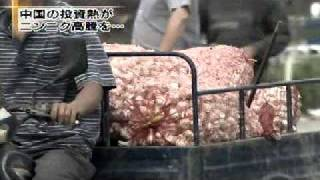 getlinkyoutube.com-ニンニクバブルに沸く中国