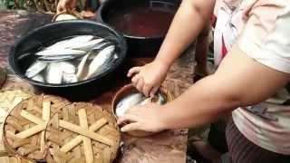 getlinkyoutube.com-ปลาทูนึ่งแม่กลอง(ร้านพี่จ้ะ)