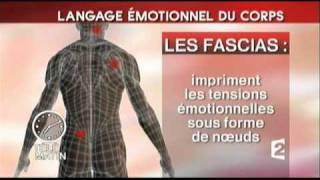 getlinkyoutube.com-Le Langage émotionnel du corps à TeleMatin