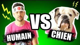 : HUMAIN VS CHIEN