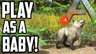 getlinkyoutube.com-Ark Survival Evolved - PLAY AS A BABY or BREED YOUR OWN! (Ark Gameplay)