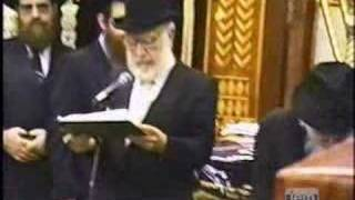 Campers Visit the Lubavitcher Rebbe - 5748/1988