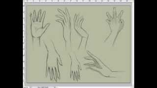 getlinkyoutube.com-تعلم رسم يد من الامام والخلف-How to draw hands, step by step front and back