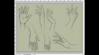 تعلم رسم يد من الامام والخلف-How to draw hands, step by step front and back
