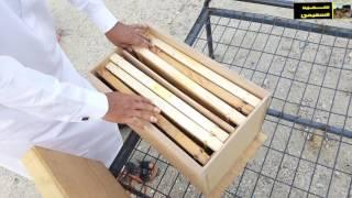 getlinkyoutube.com-شاهد | التقنيه ( 3 ) التقنيات الحديثة في | تربية النحل | مع الاستاذ  | خالد المطرفي