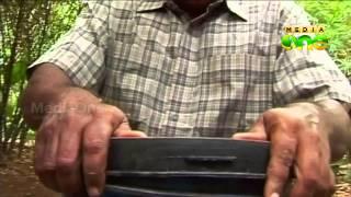 getlinkyoutube.com-Njatuvela  Agricultural awareness - Organic Farming | ജൈവ കൃഷി (Part 02, Episode 12)