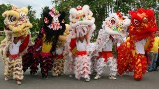 getlinkyoutube.com-Emotional Lion Dances
