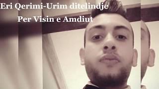 Eri Qerimi - Visi Amdiut (Official Audio)