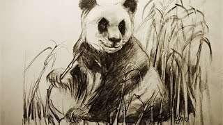 getlinkyoutube.com-Hoe teken je een Panda / dieren tekenen / #25