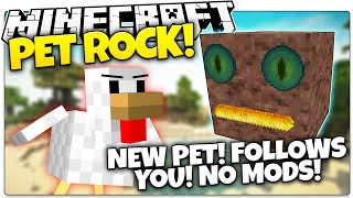 getlinkyoutube.com-Minecraft | MY NEW BOULDER SIDEKICK! | Pet Rock in Minecraft (Minecraft Vanilla Mod)