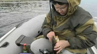 рыбалка видео белое море новое