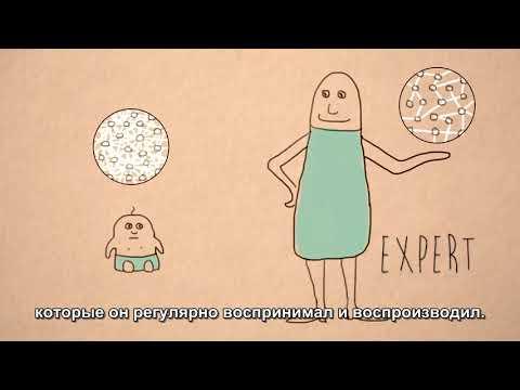 «Нейрофизиология детского разума»,  Франция, 2015
