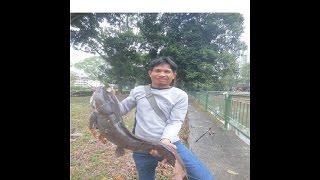 getlinkyoutube.com-ชิงหลิวผิดคิวโดนปลาดุกไซส์7กิโลกรัม