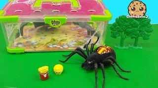 getlinkyoutube.com-Shopkins Visit Interactive Attack Wild Pets Exclusive Spider In Cage Habitat at Zoo - Cookieswirlc