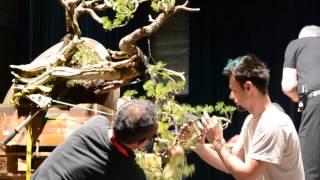 getlinkyoutube.com-Seok Ju Kim's demo at Noelanders Trophy
