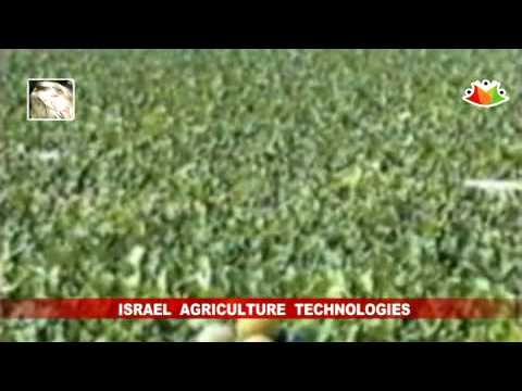 VIDEO: Israel Leads in Agriculture technologies ~ ganadería méxico