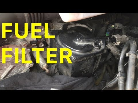 How to Change the Diesel Fuel Filter on your Citroen C4 1.6 HDi