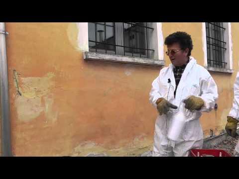 Come togliere la muffa dalle pareti esterne tutto per casa - Come togliere la muffa dalle pareti di casa ...