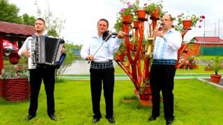 Nelu Negre,Ionut Negre si Anton Trifoi-joc de bihor instrumental 2014