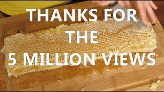 getlinkyoutube.com-mudsongs.org: Cutting & Bottling Honey