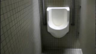 Water-less no flush urinal