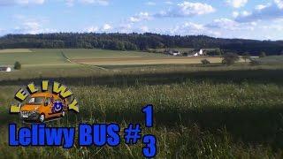 Leliwy BUS - FIRMA - Czyli co w trawie piszczy... - odc.13